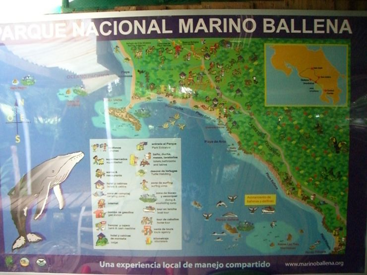 Map of Entrance to Ballena National Marine Park
