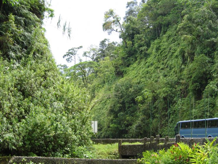 Road through Brauilo Carrillo