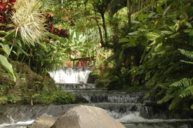 Tabacon Hot Springs Waterfall & Bridge, Arenal Volcano