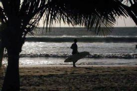 Playa Avallana Surfer - Playa Avellana, Guanacaste