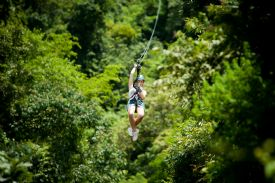 Zip-line over a beautiful canopy in Turrialba - Turrialba, Cartago