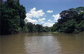 The beautiful Ca�o Negro River - Ca�o Negro National Wildlife Refuge, Alajuela