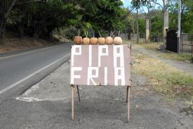 Cold Coconut Water street sign on Jaco - Jaco, North Puntarenas