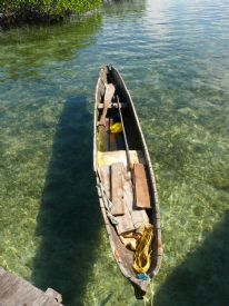 Dug out canoe in the Bocas del Toro, Panama