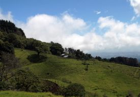 Foothills near Barva Volcano - Braulio Carrillo National Park, Heredia