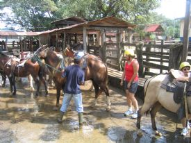 Horse stables at Adventure Tours - Rinc�n de la Vieja National Park, Guanacaste