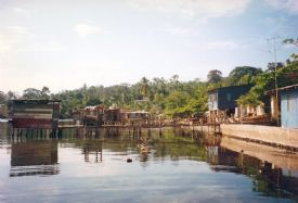 Isla Colon from the waterways in the Bocas del Toro, Panama