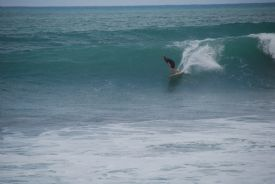 Awesome Surfing at Backwash in Matapalo