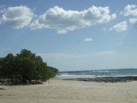 Playa Avellana Reef - Playa Avellana, Guanacaste