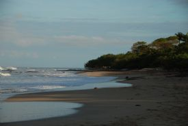 Playa Langosta to the north - Playa Langosta, Guanacaste
