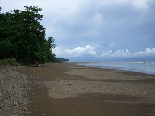 Vast Beach at Ballena Marine National Park