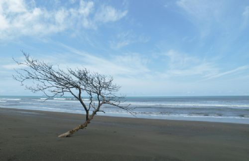Open beach of Carate, south of Corcovado