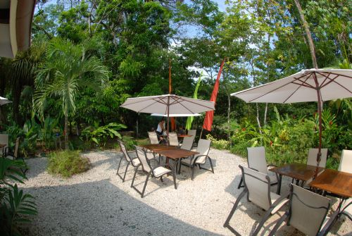 Dine with nature at Citrus restuarant