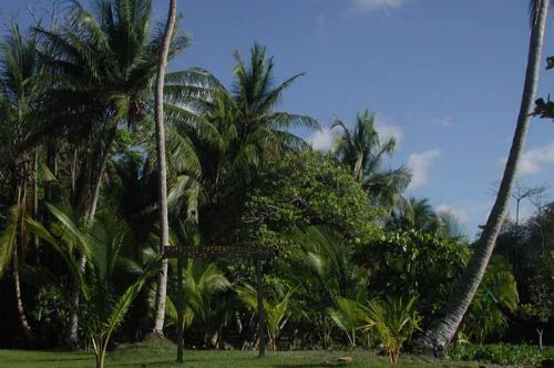 Remote land for sale in Drake Bay