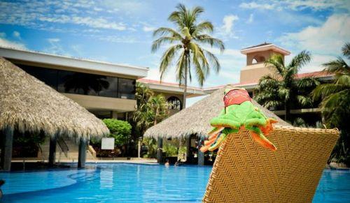 Javi the Frog relaxing on Flamingo Beach Resort pool