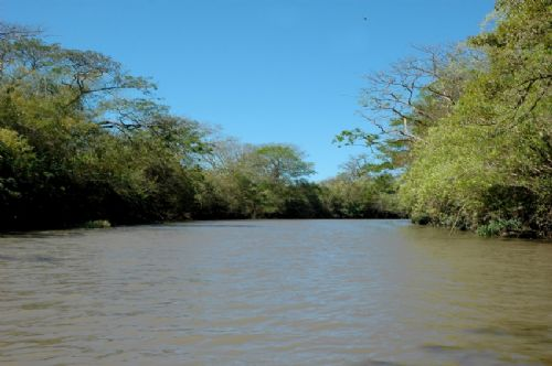 Tempisque River at Palo Verde National Park