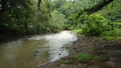 Carara River in Carara National Park