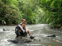 A hike in Corcovado National Park is perfect for adventurous animal lovers