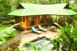 Rainforest Romance at Casa del Bosque
