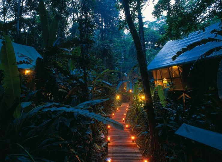 Almonds and Corals Lodge in the middle of the rainforest at night