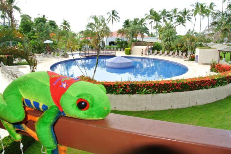 Javi the Frog at Best Western Jaco
