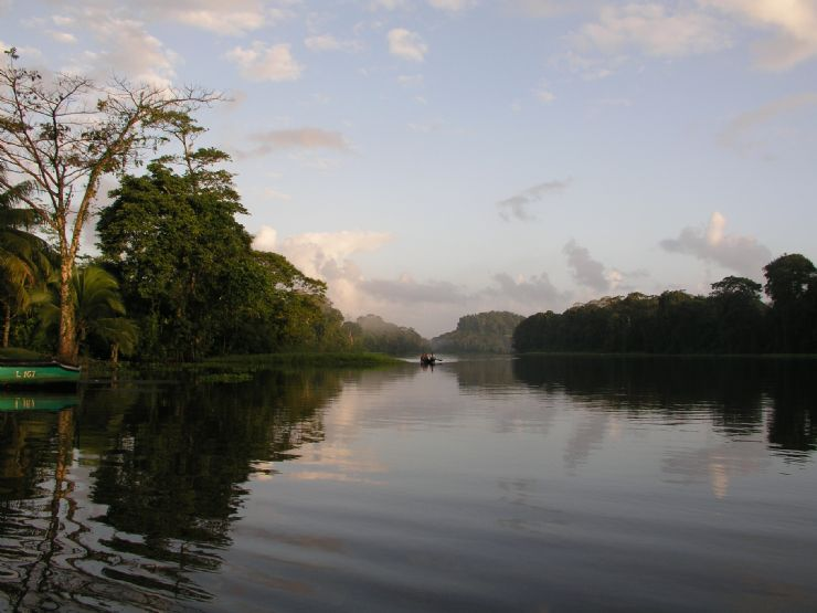 Morning at Tortuguero