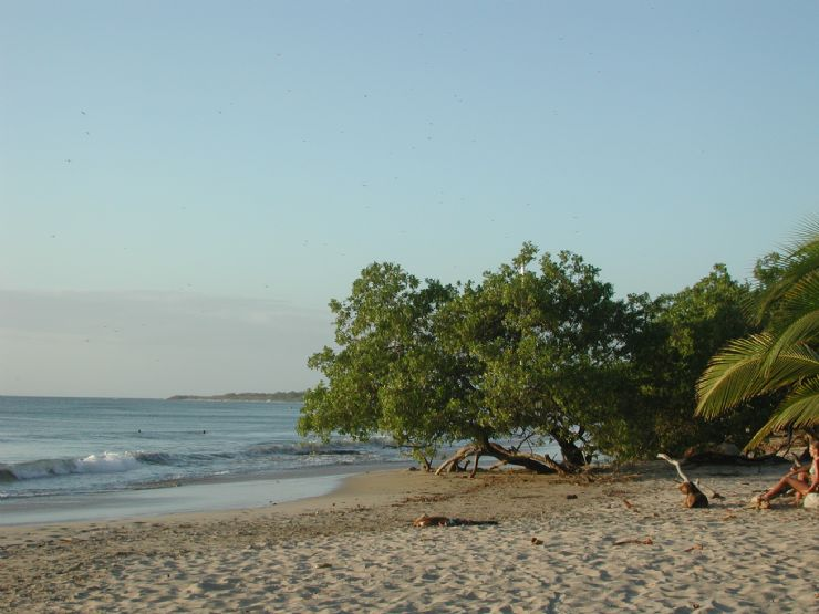 Playa Avellana Beach