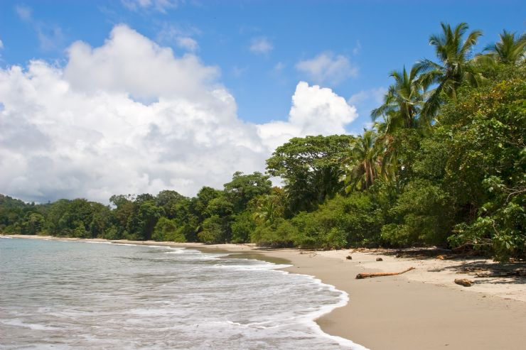 Beautiful beach in Manuel Antonio National Park