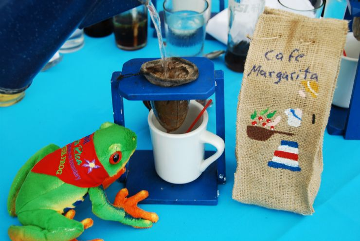 Javi the Frog brewing Cachi coffee