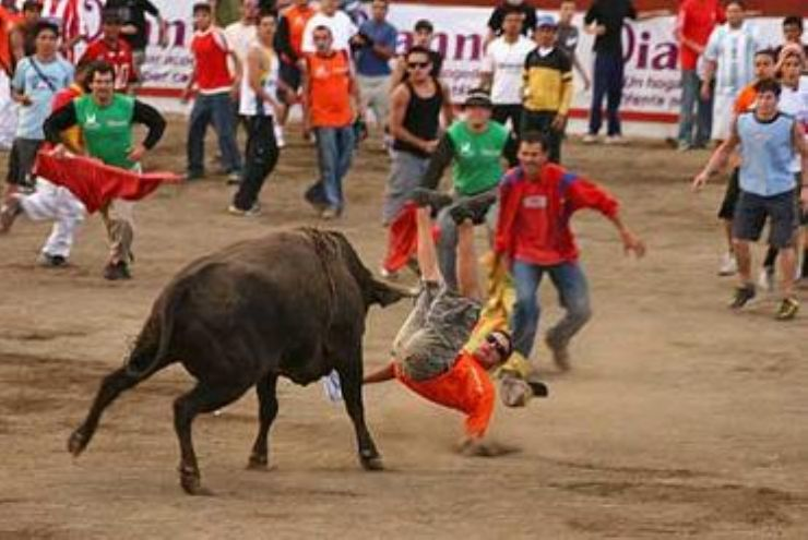 Bull parties in Zapote, San Jose