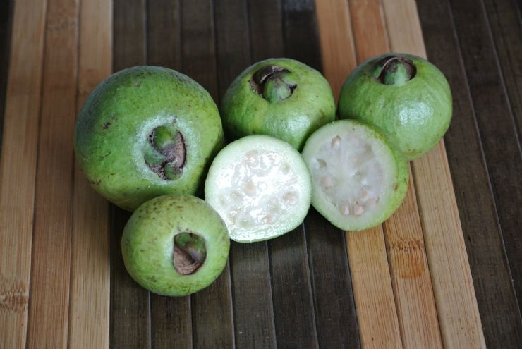 Cas or Costa Rican Guava fruit perfect for juicing