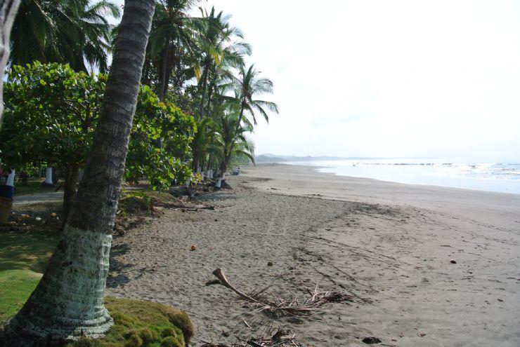 Esterillos Oeste Costa Rica City Guide Go Visit Costa