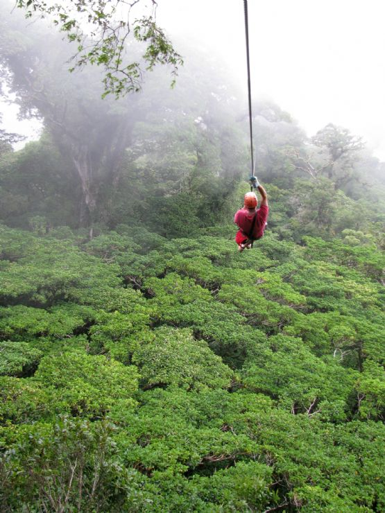 Canopy Tours in Heredia & Canopy Tours in Heredia - Zip through the trees in the canopy in ...