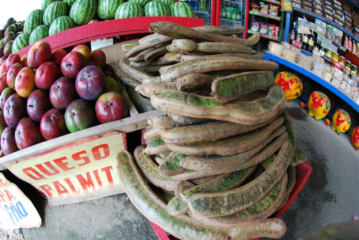 The Best Tropical Fruits Of Costa Rica Javi S Travel