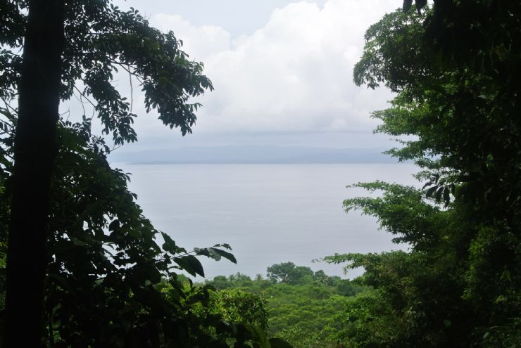 Amazing Gulf view from Hiking trail platform