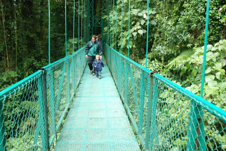 Easy & beautiful hiking over hanging bridges in Monteverde