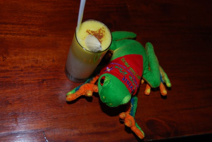 Javi the Frog drinking a Banana Colada, Que Rico Restaurant