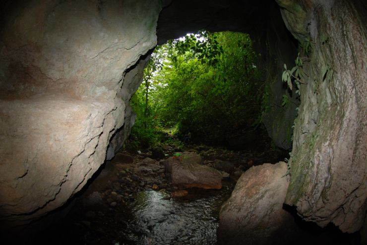 Take shelter in caves but watch out for bats