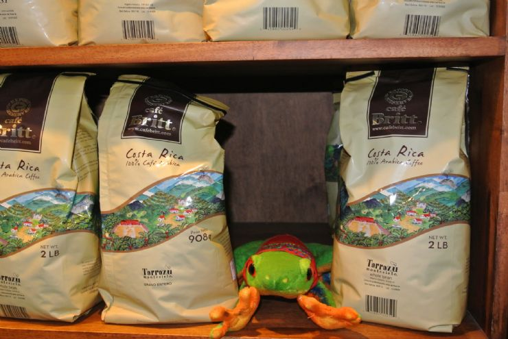 Javi the Frog shopping Britt Coffee bags