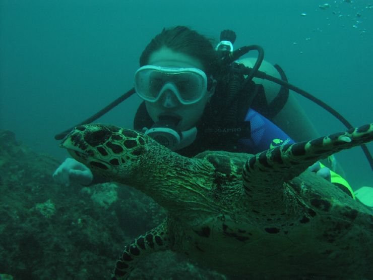 Scuba Diving with Marine Turtle