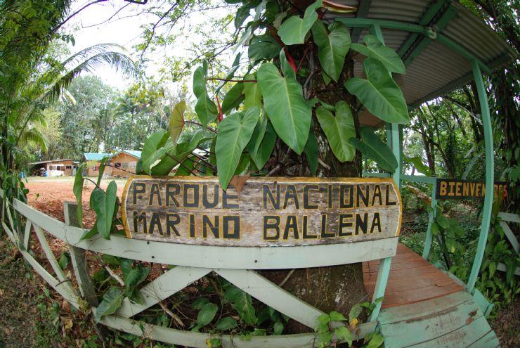 Ballena National Marine Park, Costa Rica - City Guide - Go Visit