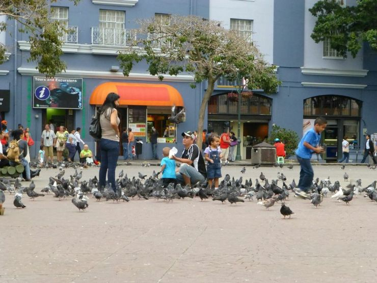 Family playing with pigeons in Plaza de a Cultura