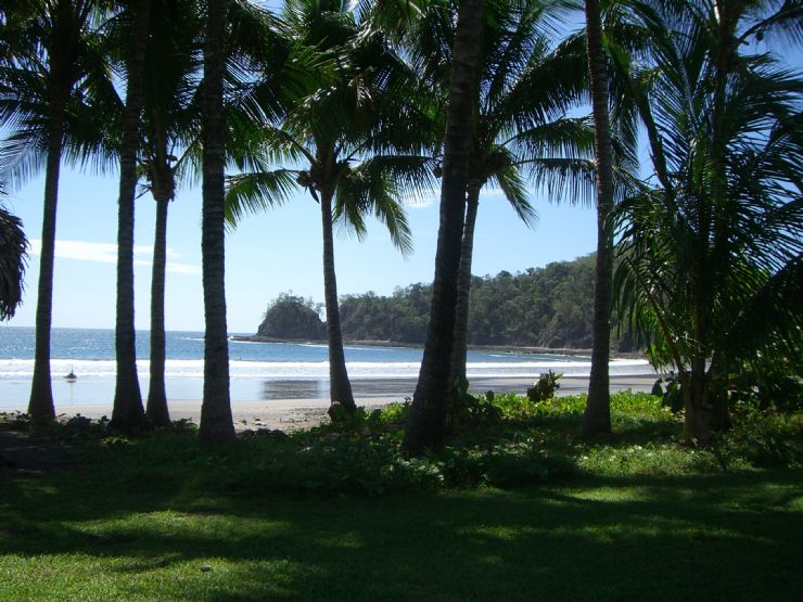 The perfect palm lined beach at Islita