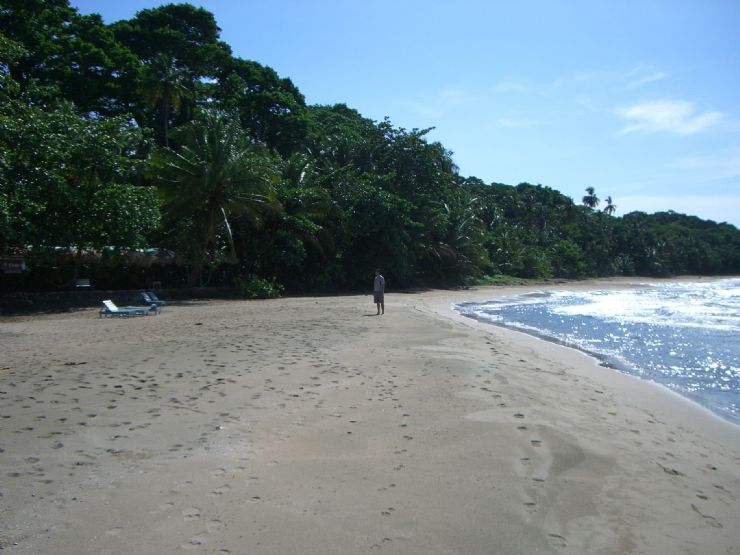 Beautiful Caribbean Beach in Manzanillo
