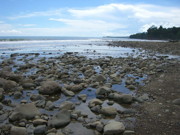 Rocky Reef at Ballena National Marine Park