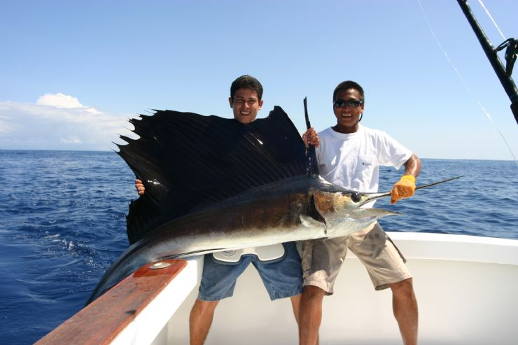 Sailfish in Southern Costa Rica
