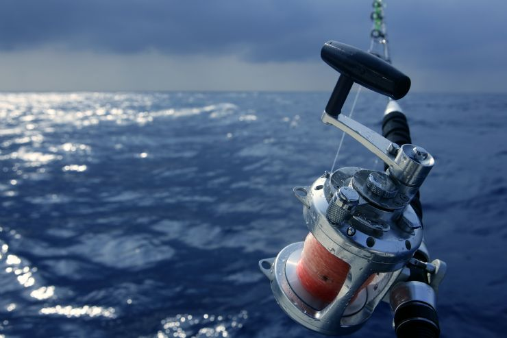Sport Fishing Reel off the coast of Southern Costa Rica