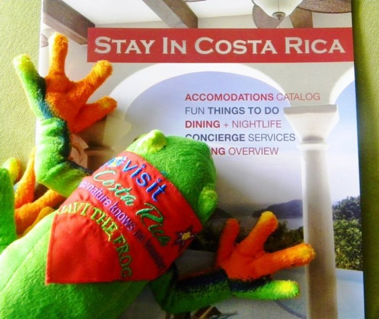 Javi the Frog and Stay In Costa Rica, the perfect company