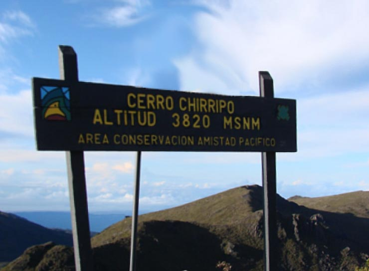 At the top of Cerro Chirripó - Chirripó National Park