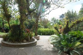 Beautiful trails in Paraiso, Cartago